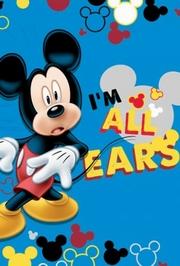 covoare copii mickey mouse