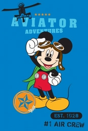 covorase cu mickey mouse